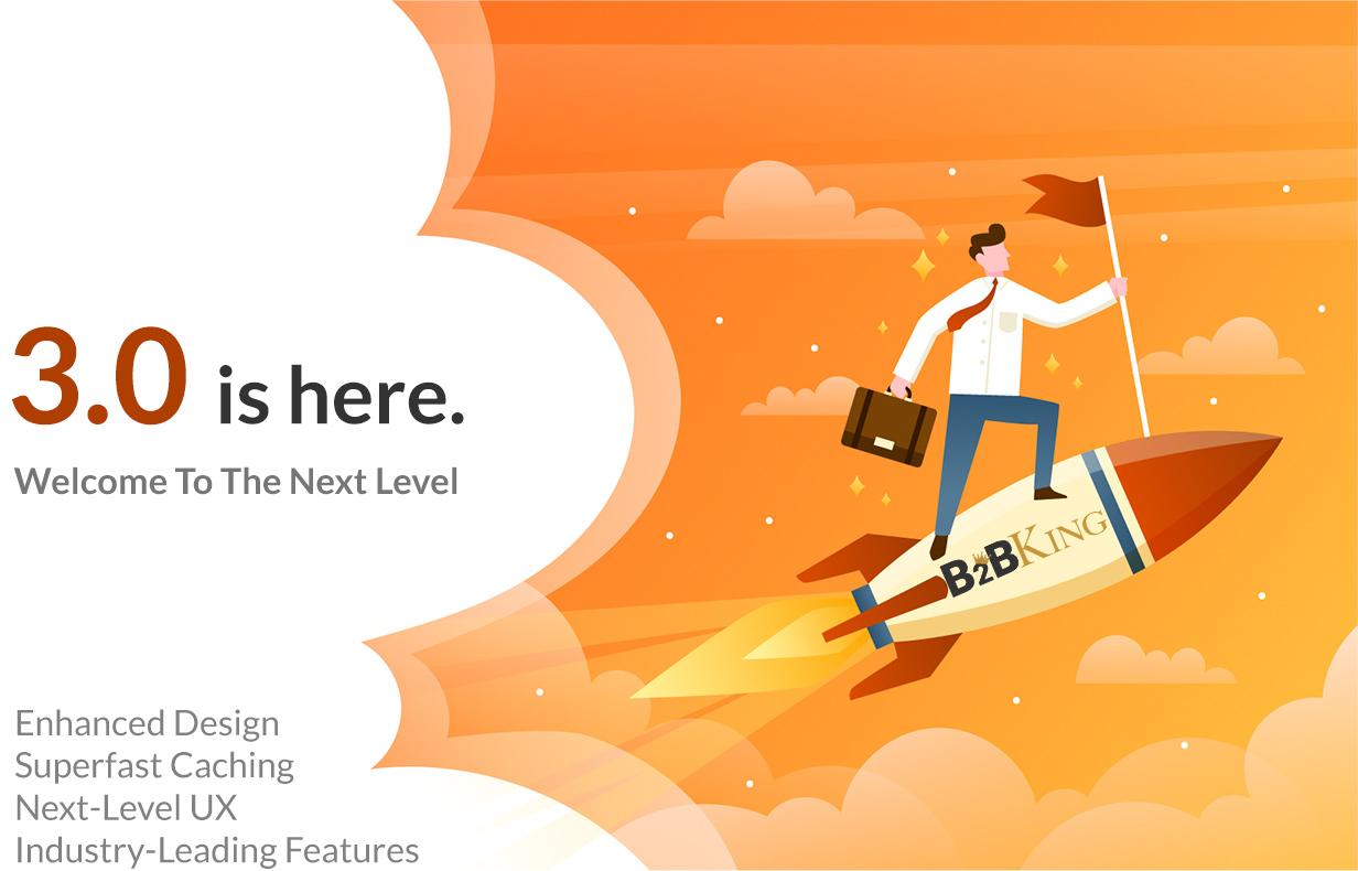 B2BKing - The Ultimate WooCommerce B2B & Wholesale Plugin - 6